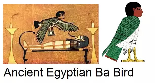 Ancient Egyptian Ba Bird