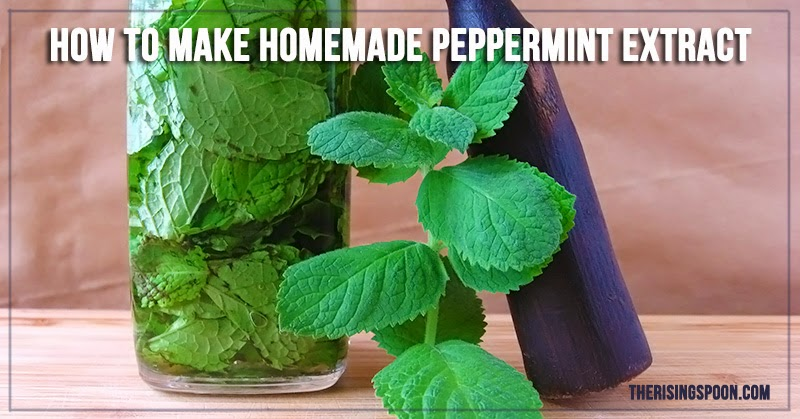 homemade peppermint extract