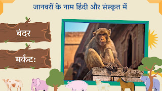 Monkey name in sanskrit and hindi with images