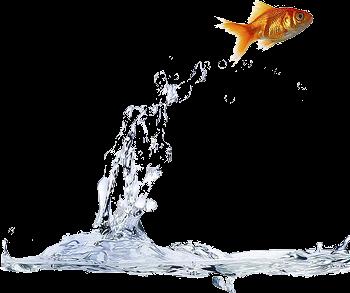 Living Water: E...