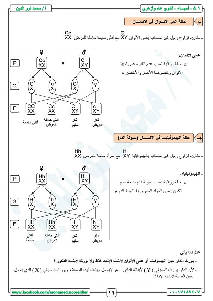 مراجعة أحياء أولى ثانوي ترم ثاني | صور 13
