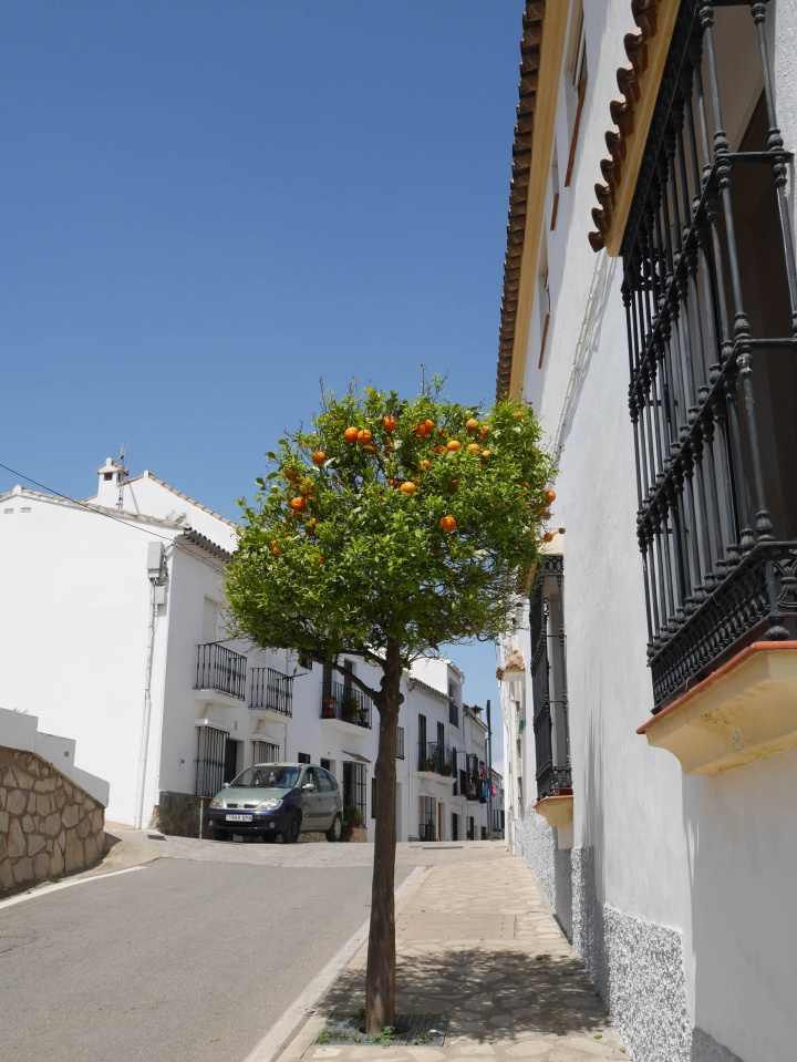 Street in Zahara de la Sierra, Spain