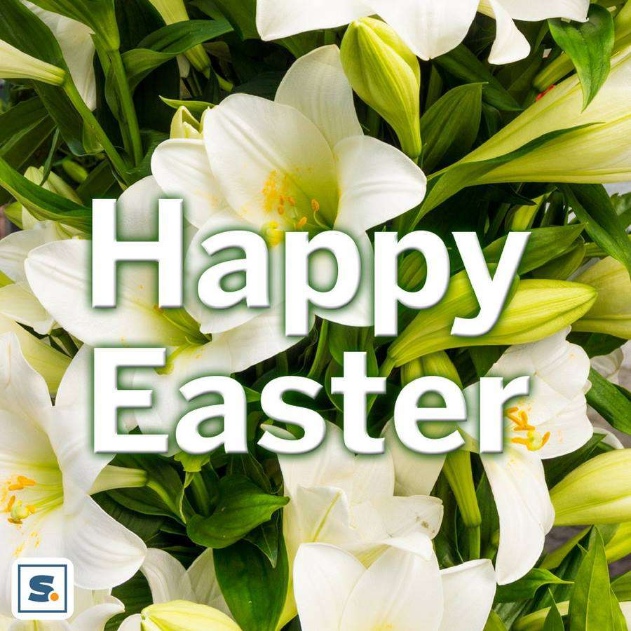 Easter Wishes pics free download