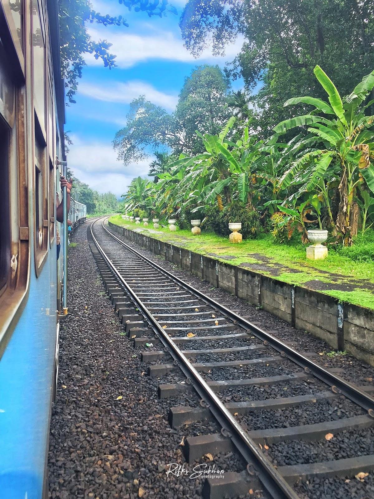 train_nature
