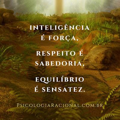 direitos humanos inteligência é força, respeito é sabedoria, equilíbrio é sensatez