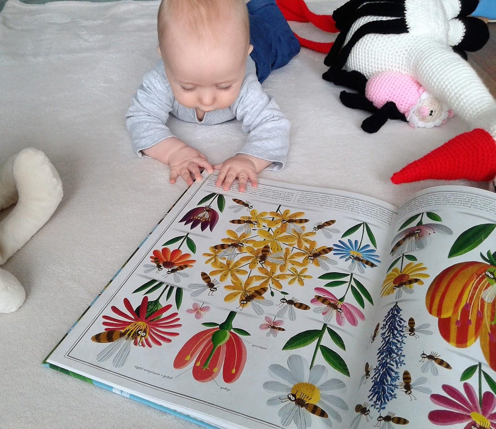 Opinia na temat książki Pszczoły