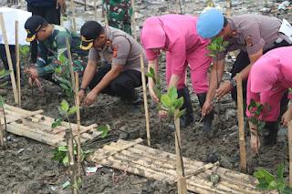 Peringati Hari Pohon, Polres Cirebon Kota Tanam Mangrove Diperairan Cirebon