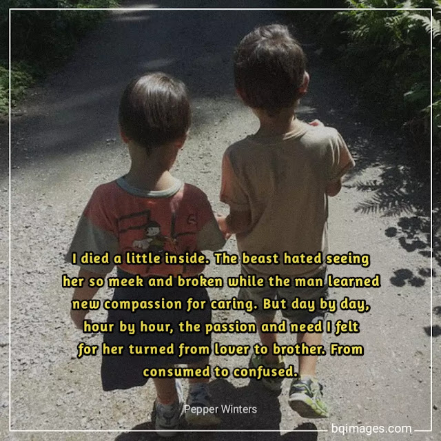friendship quotes for brother