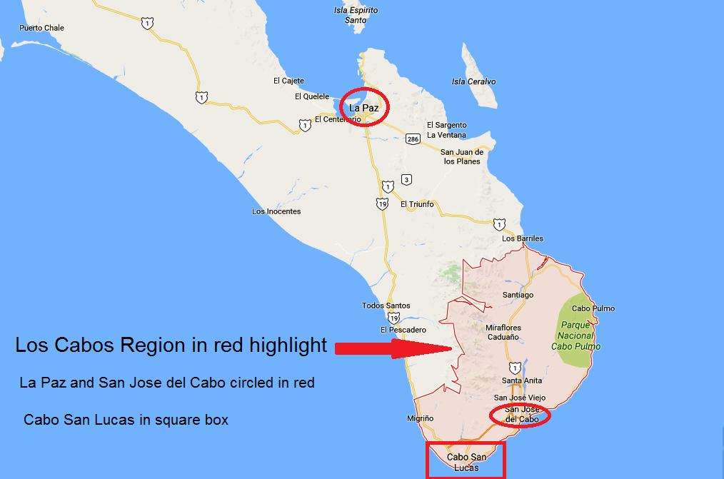 Borderland Beat Los Cabos 3 dismembered bodies discovered as