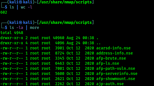 Nmap scripts for security testing