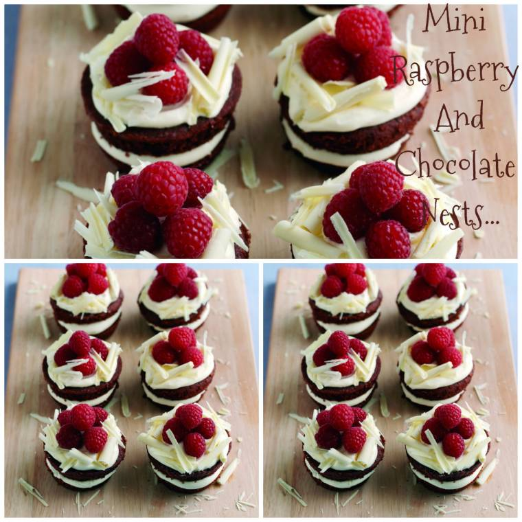 Mini Raspberry And Chocolate Nests