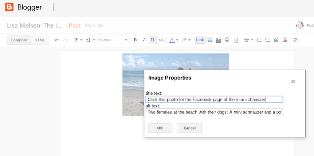 screenshot of what title text and alt text look like on blogger