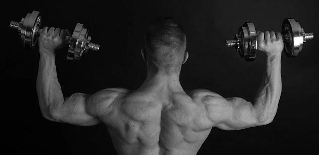 تنزيل Dumbbell Home Workout   تطبيق تدريب كمال الأجسام الكامل باستخدام الدمبل فقط لنظام الاندرويد