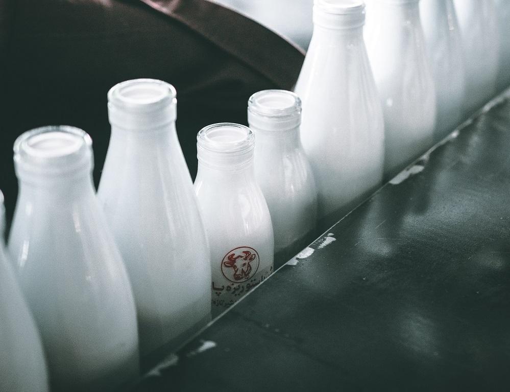 Ilustrasi pabrik susu sapi