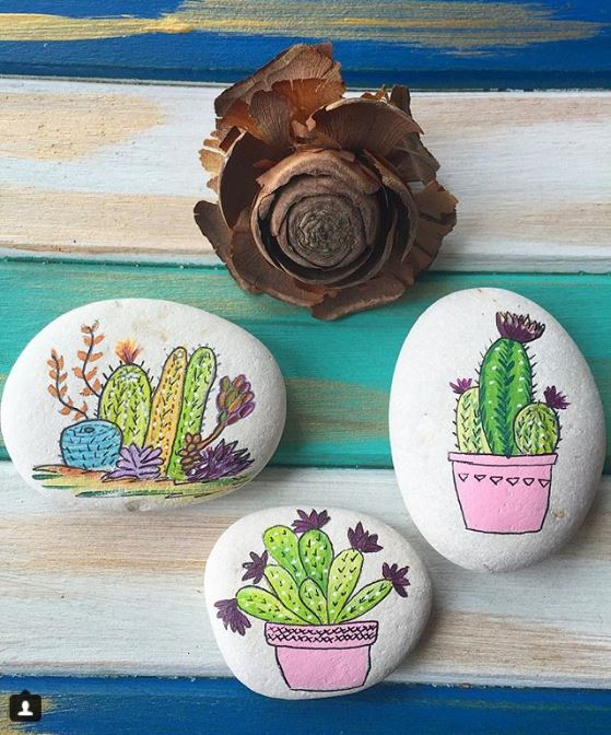 cactus and succulent doodles on painted rocks