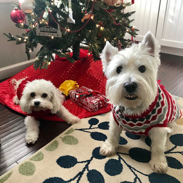 Two dogs laying on the floor, on a red Christmas tree skirt, under a decorated Christmas tree.