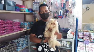 Cats Lovers Siantar Harap Pelaku Mutilasi Kucing di Medan Ditangkap
