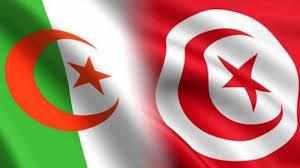 موعد مباراة تونس والجزائر الودية والقنوات الناقلة للمباراة