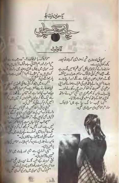 Chalo sang chalen novel by Yasmeen Nishat Online Reading