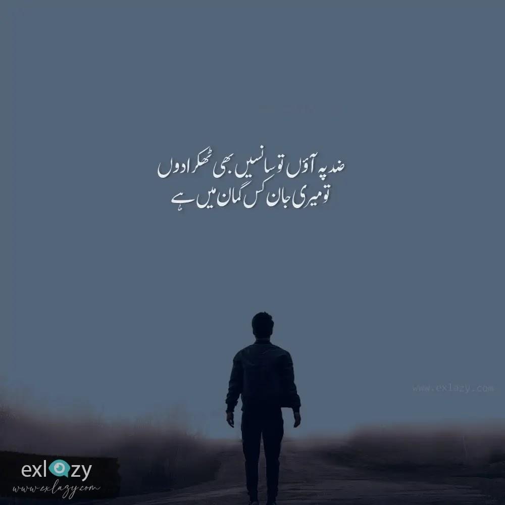The 40 Best Attitude Shayari in Urdu 2 Lines
