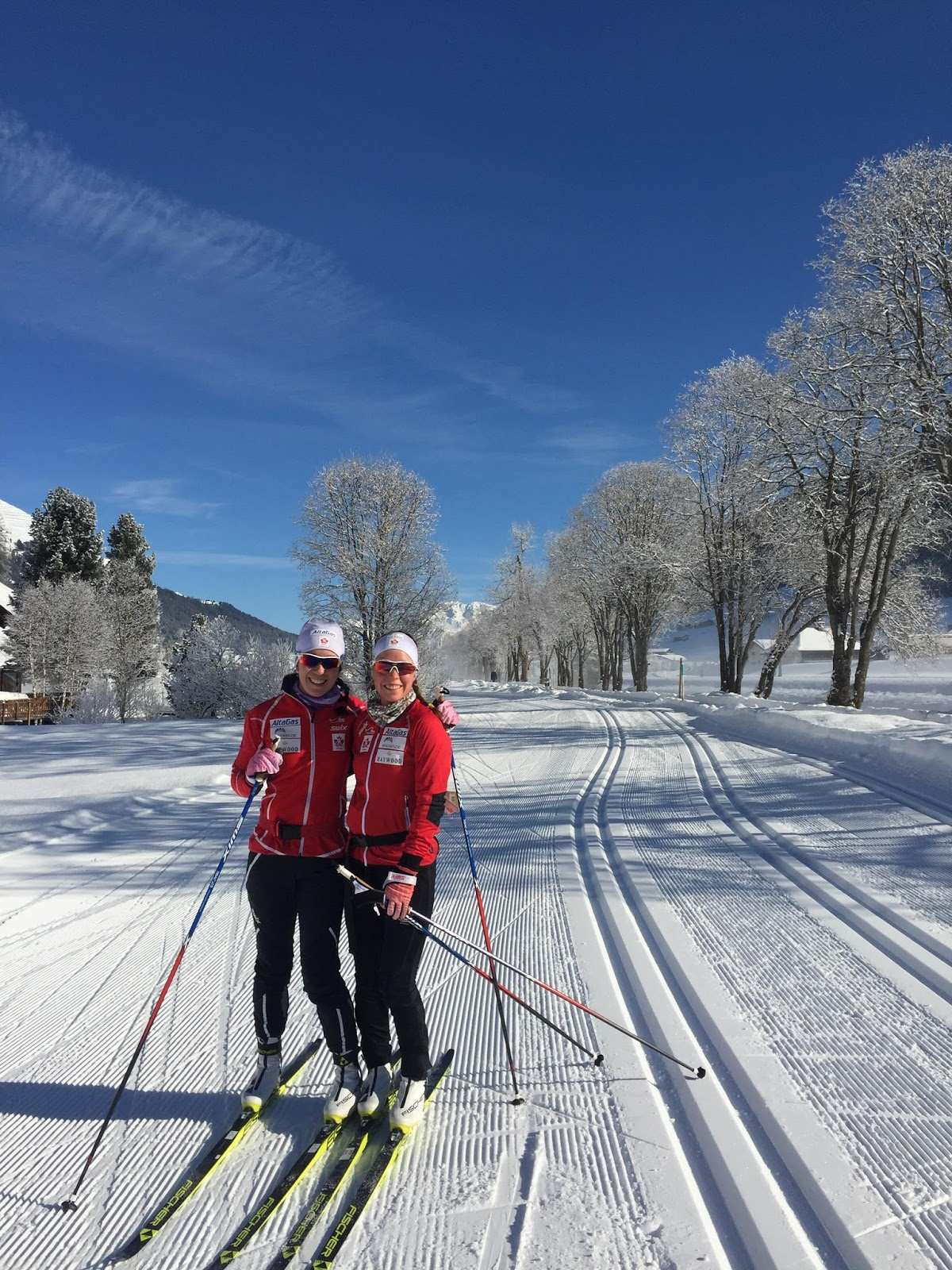 how to ski 3km without animals with regard to Desire