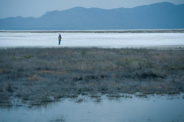 Lake Meyghan, Iran