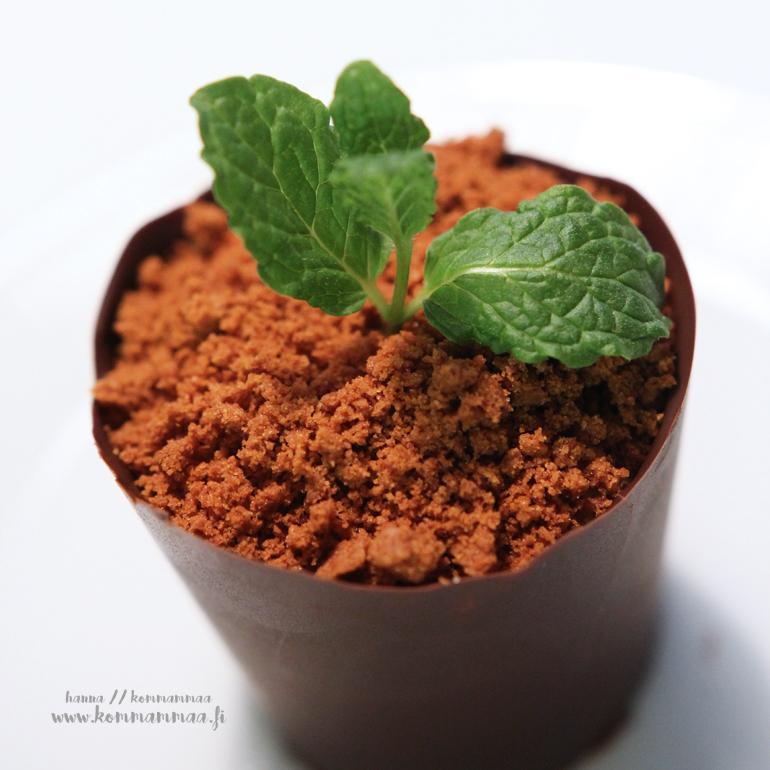 jälkiruoka kukkaruukussa suklaaruukku kevätkylvö keksimurua multana