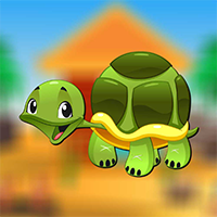 Play AvmGames Turtle Escape