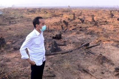 Presiden Jokowi Menang Lawan Pembakar Hutan PT Waringin Rp 466 Miliar!