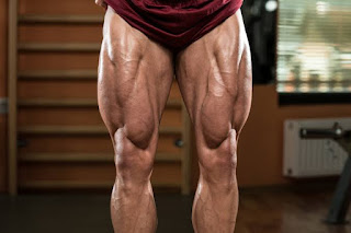 Top 5 Exercises For Building Legs, Muscular Legs