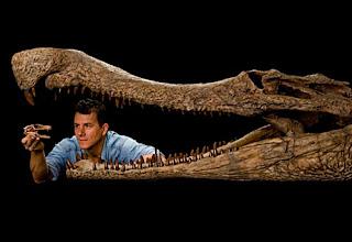 Tamaño Rhamphosuchus crassidens