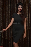 Priya Vadlamani super cute in tight brown dress at Stone Media Films production No 1 movie announcement 040.jpg