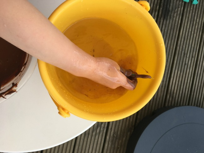 5-minute-games-muddy-toddler-washing-creatures-plastic-snakes-and-Lidl-stikeez-in-bucket-of-water