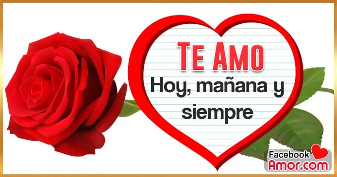rosa roja te amo