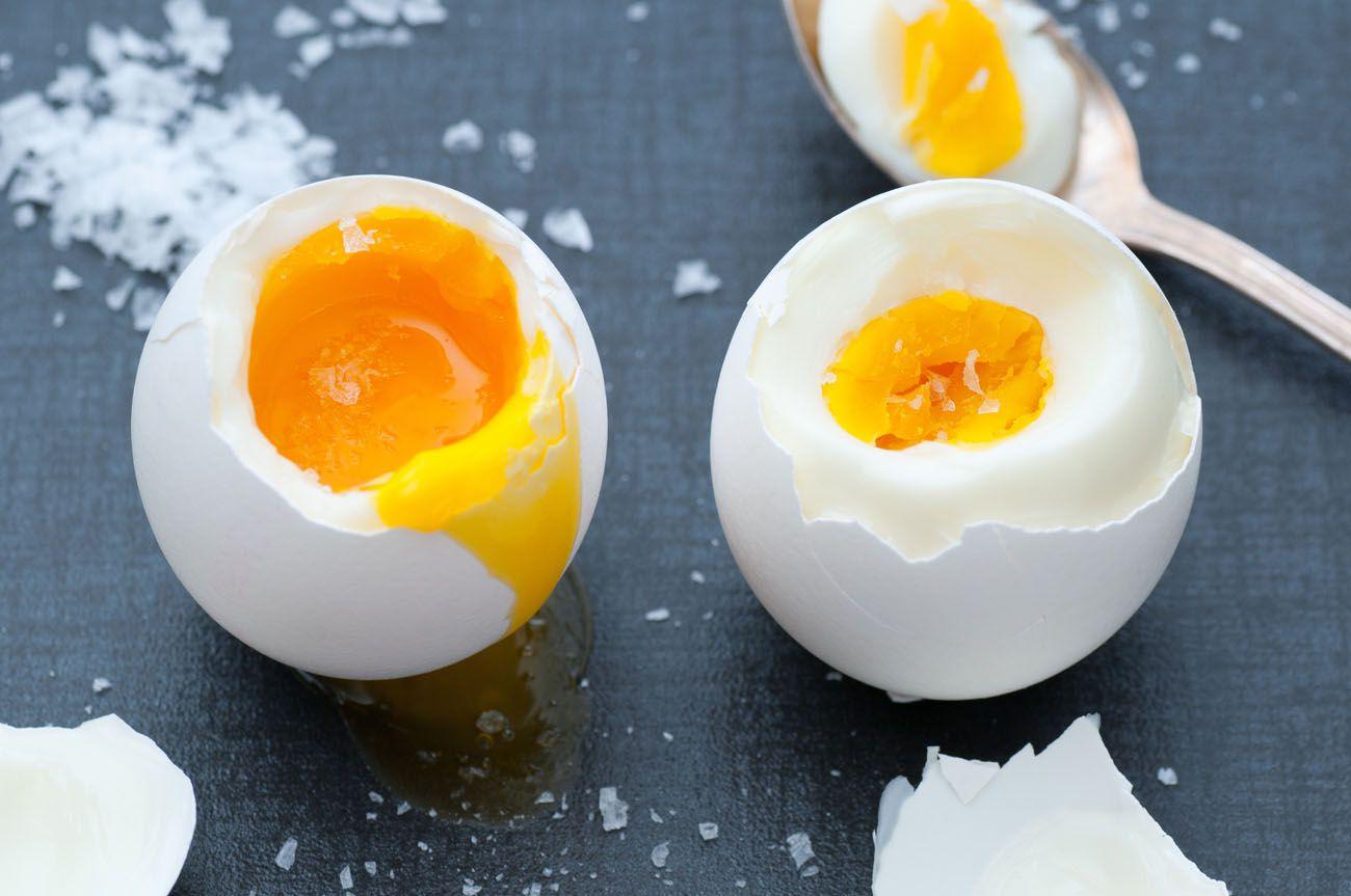 Alat Penetas Telur Bebek Ebook