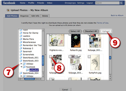 Facebook Create Album
