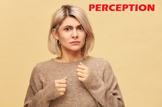 Pengertian Persepsi Dan 8 Langkah Proses Persepsi