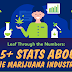 85+ Must-Know Marijuana Statistics and Facts #infographic