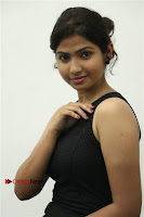 Palli Paruvathile Movie Press Meet  0011.jpg