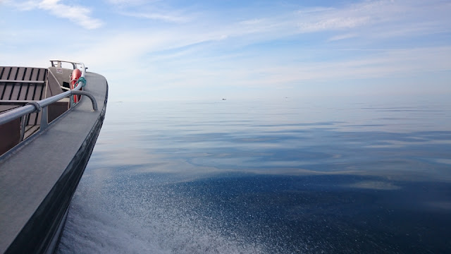 Veneen keula kulkee tyynellä merellä