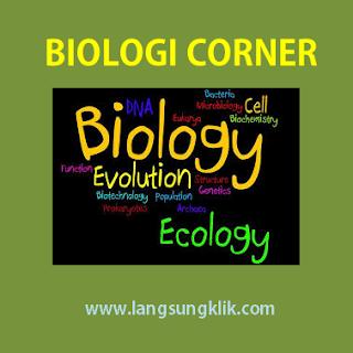 Materi Belajar Arthropoda ( Biologi SMA )