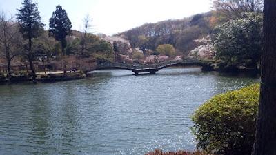 町田市 薬師池公園 池
