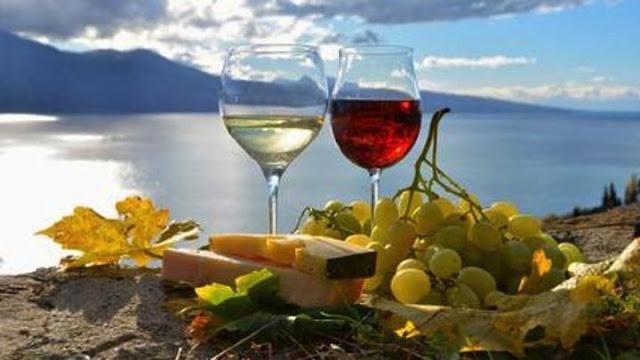 Αισιοδοξία για την φετινή παραγωγή οίνου στην Πελοπόννησο