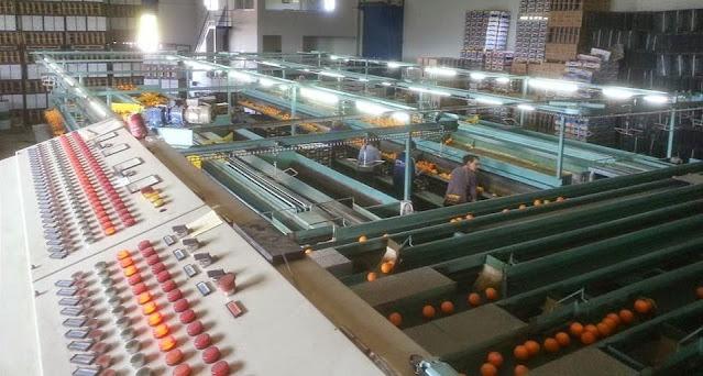 Θέσεις εργασίας για μόνιμους εργάτες-εργάτριες ζητά συσκευαστήριο στην περιοχή του Άργους