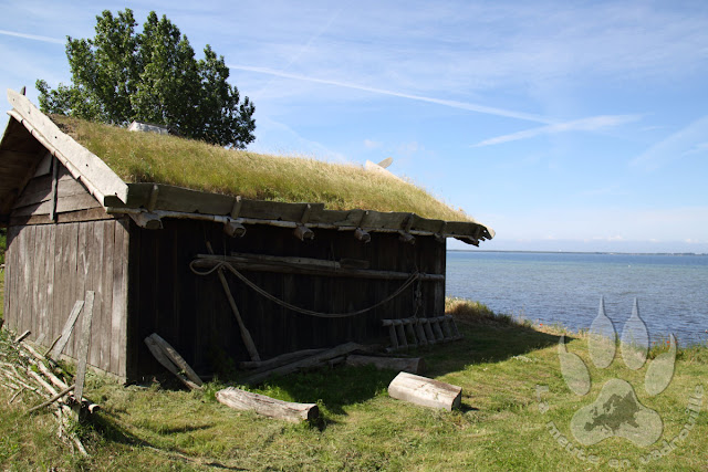 Suede-scanie-falsterbo-foteviken-viking-museum