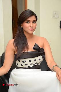 Actress Mannara Chopra Pictures at Jakkanna Audio Launch  0201.JPG