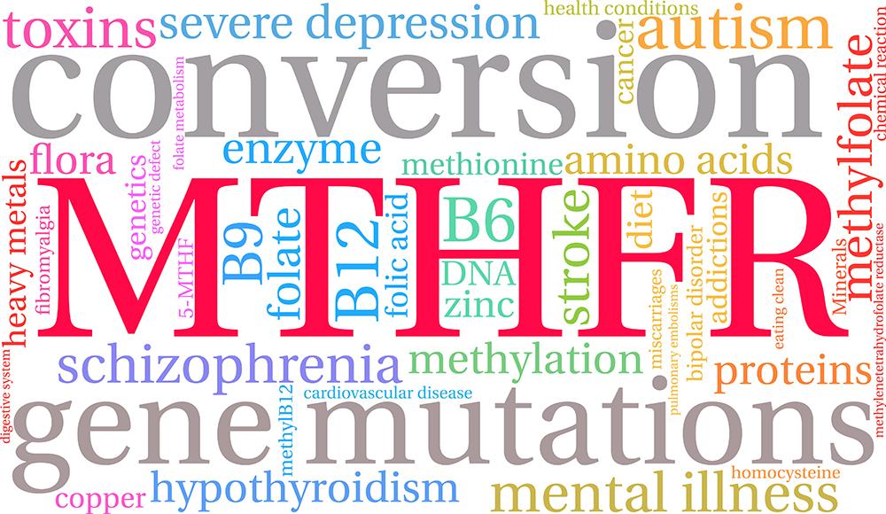 Rare Diseases 101 MTHFR Mutation