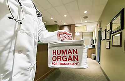 Organ/Tissue Donor Enrollment Day