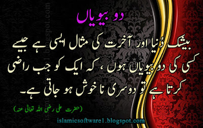 hazrat ali quotes in urdu with images