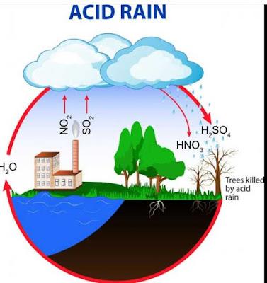 acid rain
